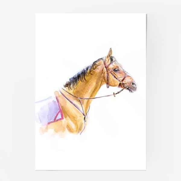 Постер «Портрет донского жеребца»