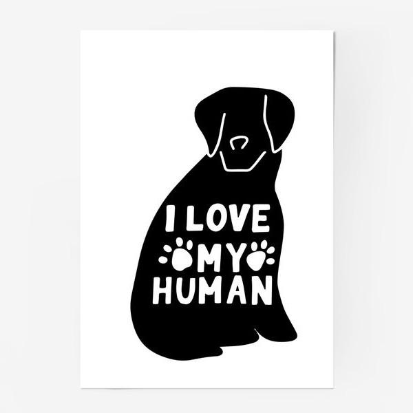 Постер «Ротвейлер. Принт I love my human. Любителям собак»