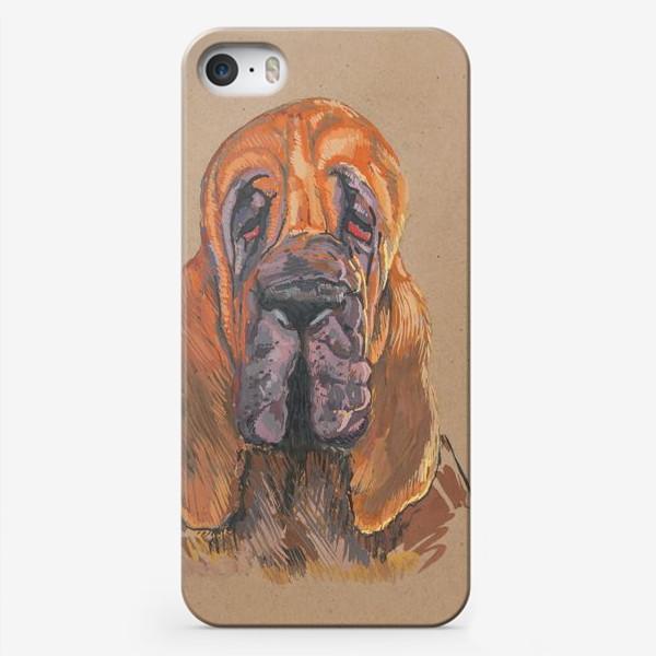 Чехол iPhone «Бладхаунд»