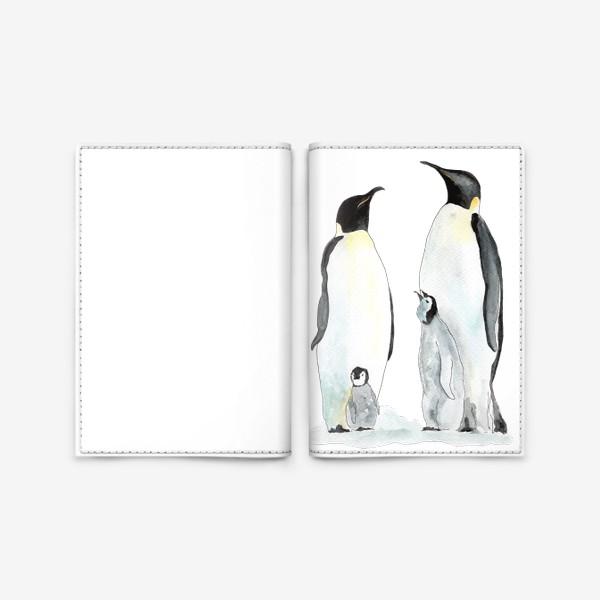 Обложка для паспорта «Пингвины. Дружная семейка.»