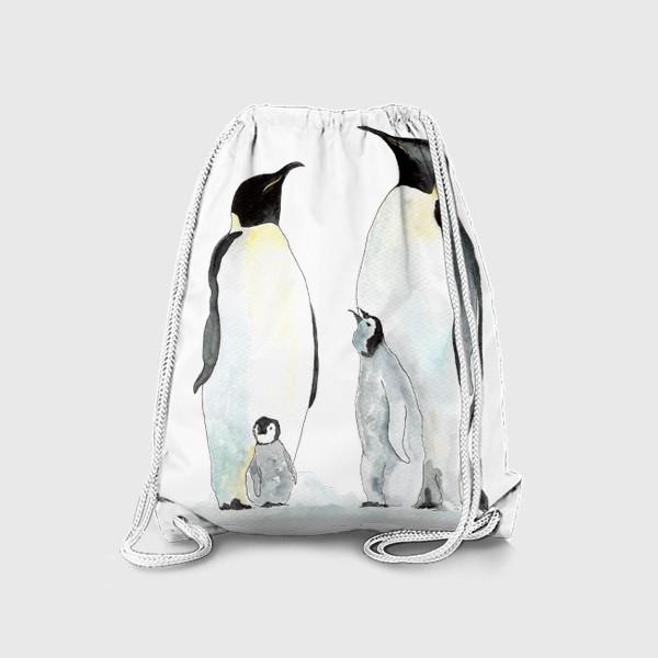 Рюкзак «Пингвины. Дружная семейка.»