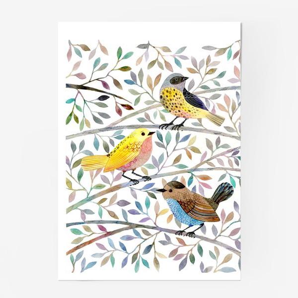 Постер «Птицы на веточках»