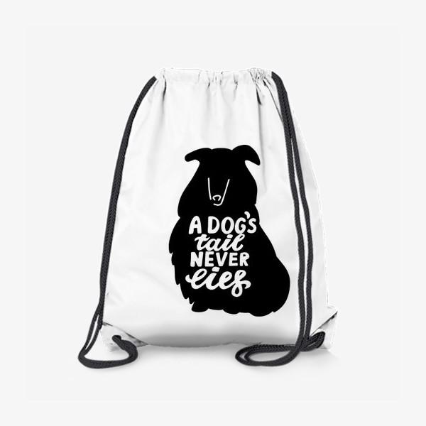Рюкзак «Колли с надписью A dog tail never lies. Собаководам»