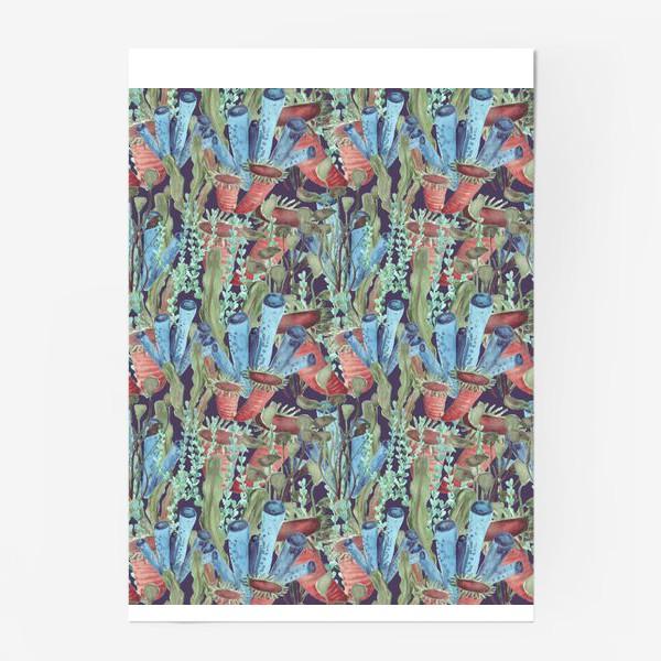 Постер «Морской лес. Водоросли водоемов»