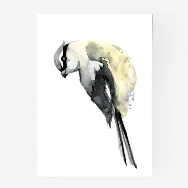 Постер «bird»