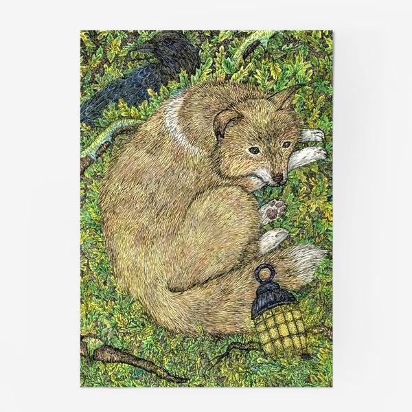 Постер «Собака и ворон»