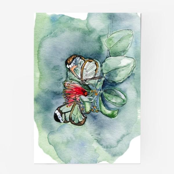 Постер «Стеклянные бабочки»