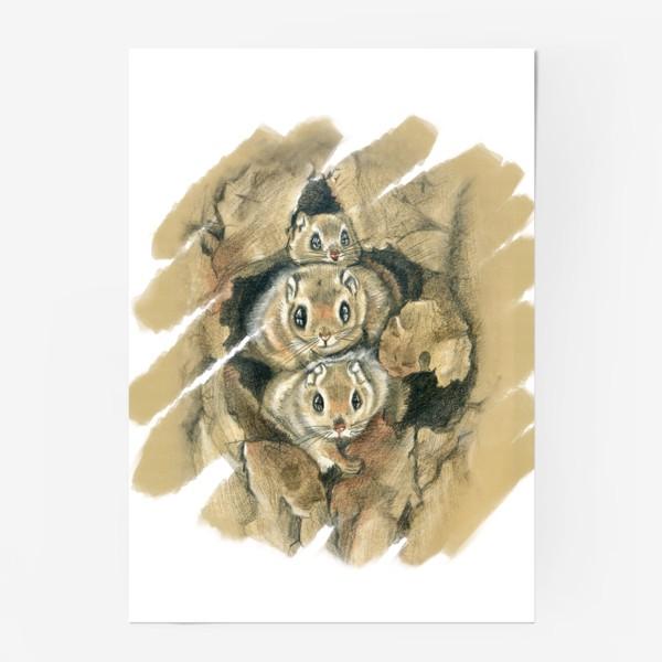 Постер «Из дупла »