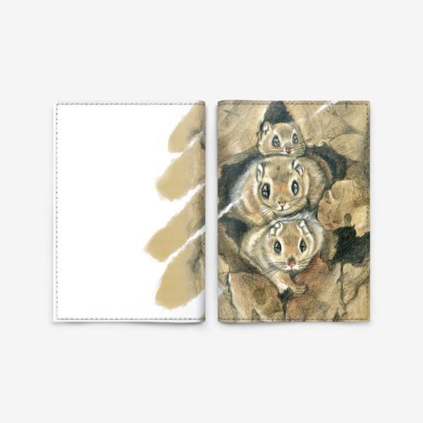 Обложка для паспорта «Из дупла »