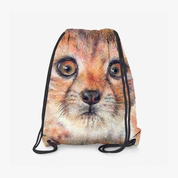 Рюкзак «Лео,леопард»
