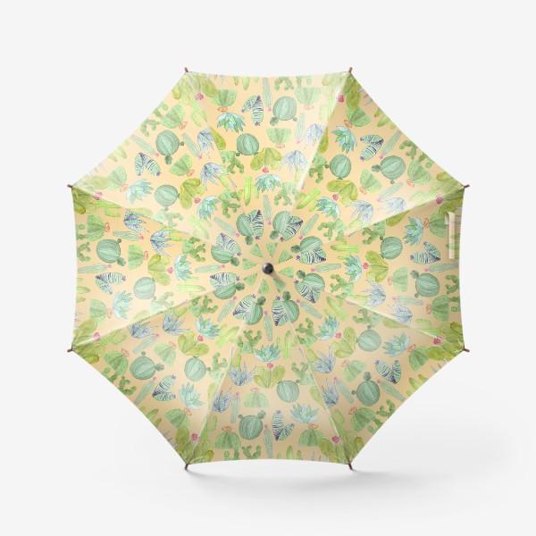 Зонт «Кактусовый лес. Пустыня кактусов»