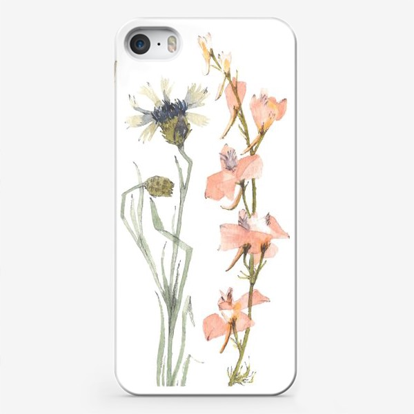 Чехол iPhone «Гербарий»
