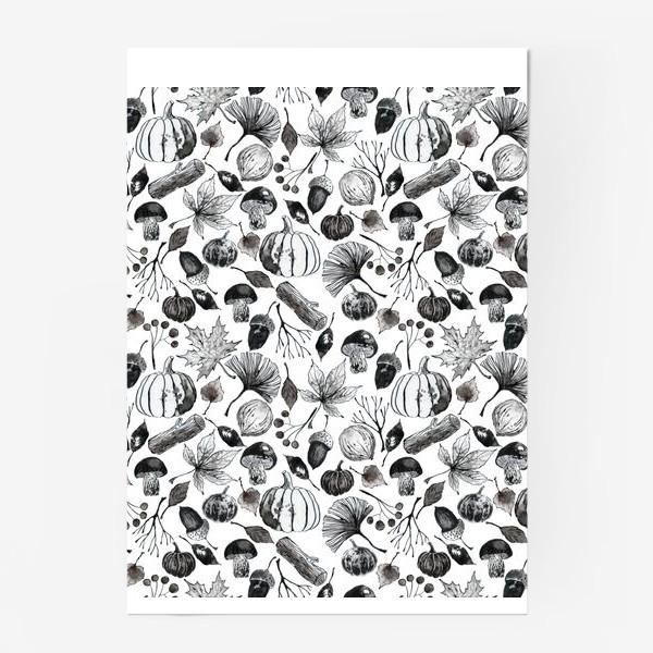 Постер « Тыквы, грибы и осенние листья. Тушь.»