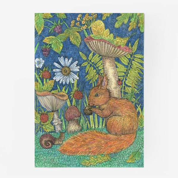 Постер «Белка и грибы»