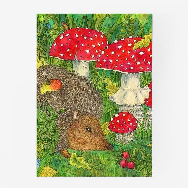 Постер «Маленький ежик в лесу среди мухоморов»