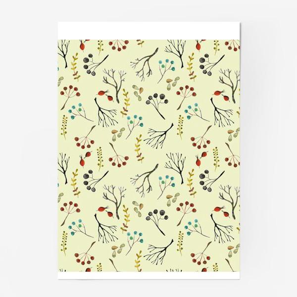 Постер «Веточки, семена, шиповник. Акварель. Осень.»