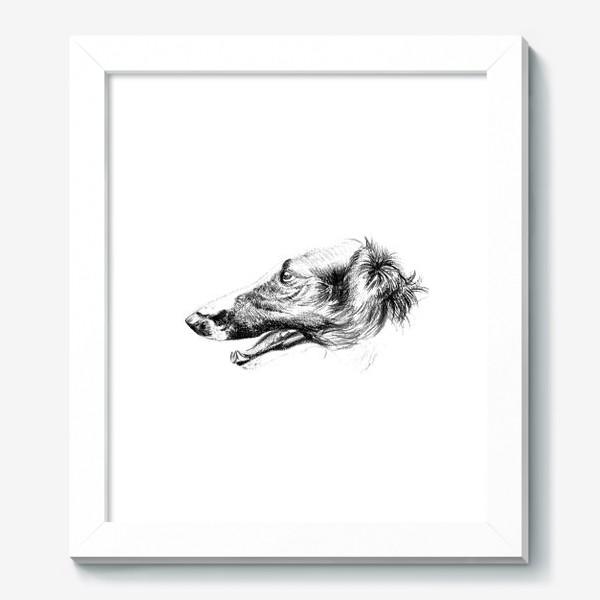 Картина «Портрет собаки»