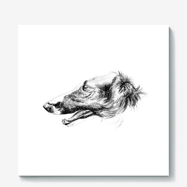 Холст «Портрет собаки»