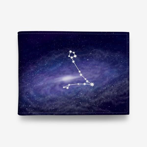 Кошелек «Созвездие Рыбы. Галактика»