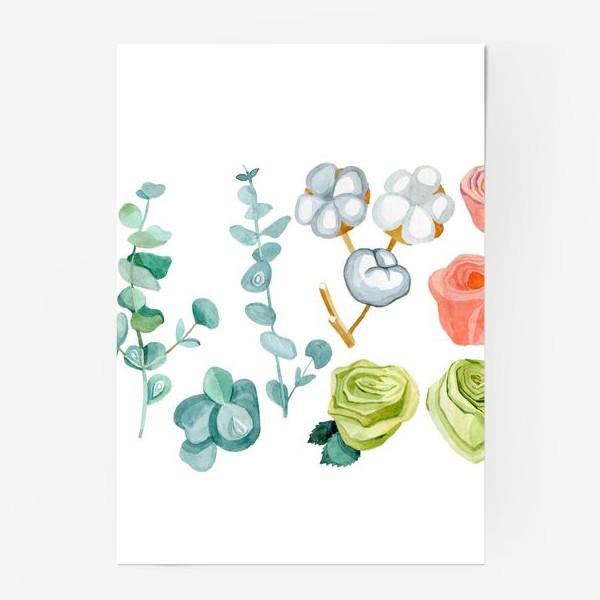 Постер «Эвкалипт, Хлопок и розы»