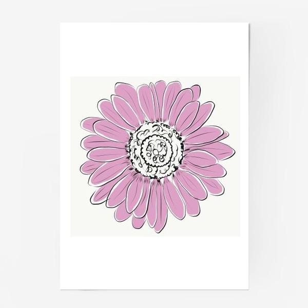 Постер «Розовая ромашка»
