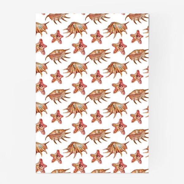 Постер «Ракушки и морская хвезда»