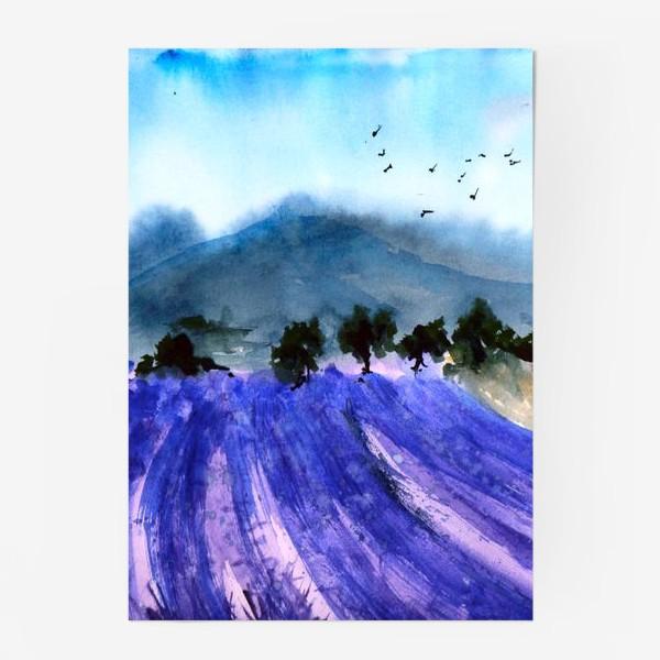 Постер «Лавандовые поля Прованса»
