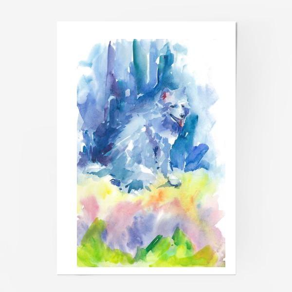 Постер «Волшебный лес. Волк»