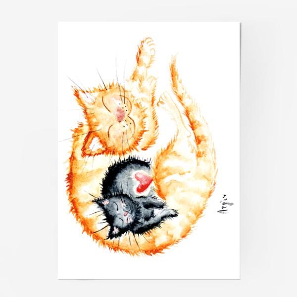 Постер «Кошачья любовь»