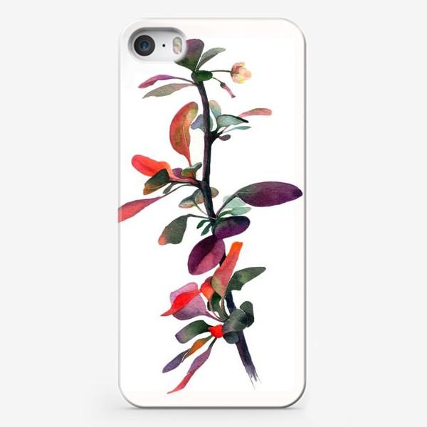 Чехол iPhone «барбарис»