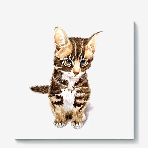 Холст «Милый котенок сидит»