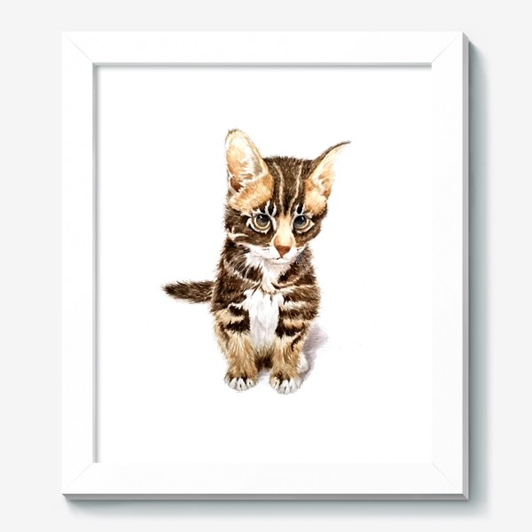 Картина «Милый котенок сидит»