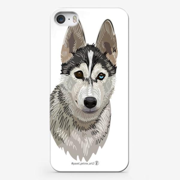 Чехол iPhone «Хаски»