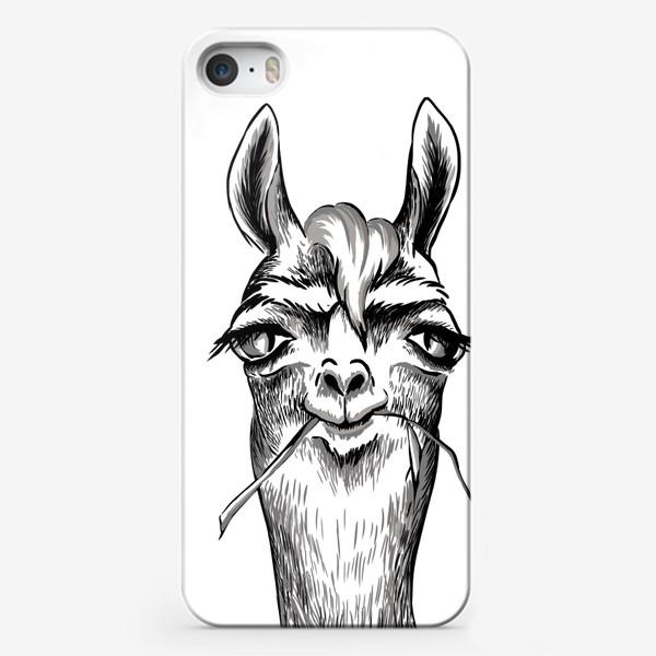 Чехол iPhone «Портрет ламы»