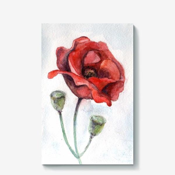 Холст «Цветок Мак акварель»