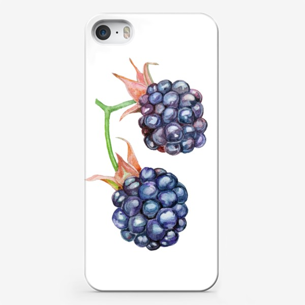 Чехол iPhone «The bush of the forest blackberry.»