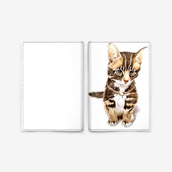 Обложка для паспорта «Милый котенок сидит»