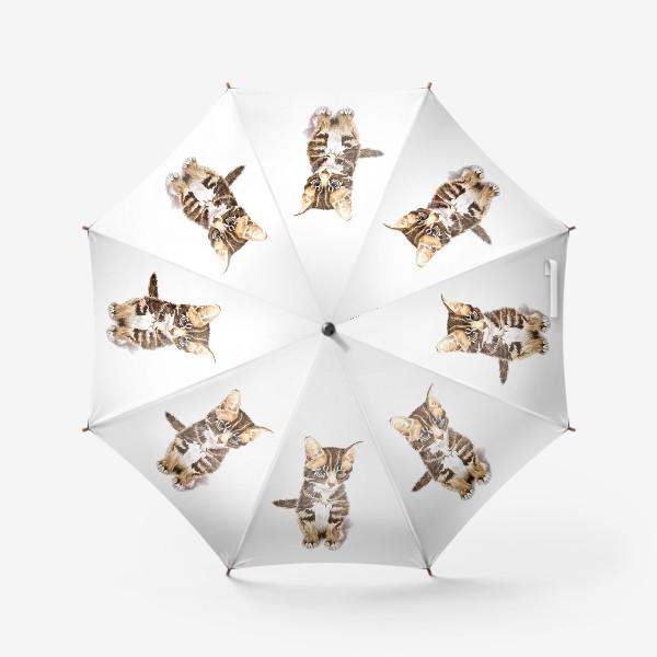 Зонт «Милый котенок сидит»