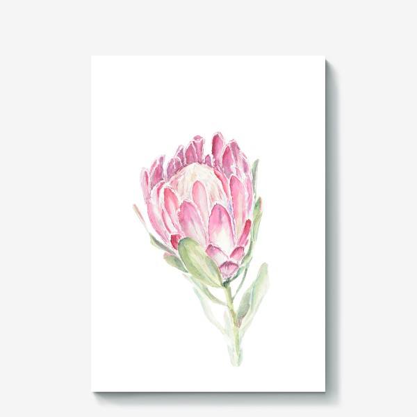 Холст «Протея. Акварельный цветок»
