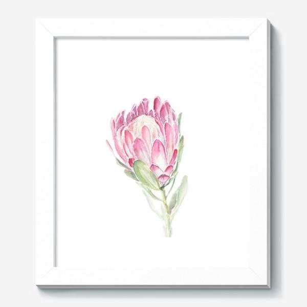 Картина «Протея. Акварельный цветок»