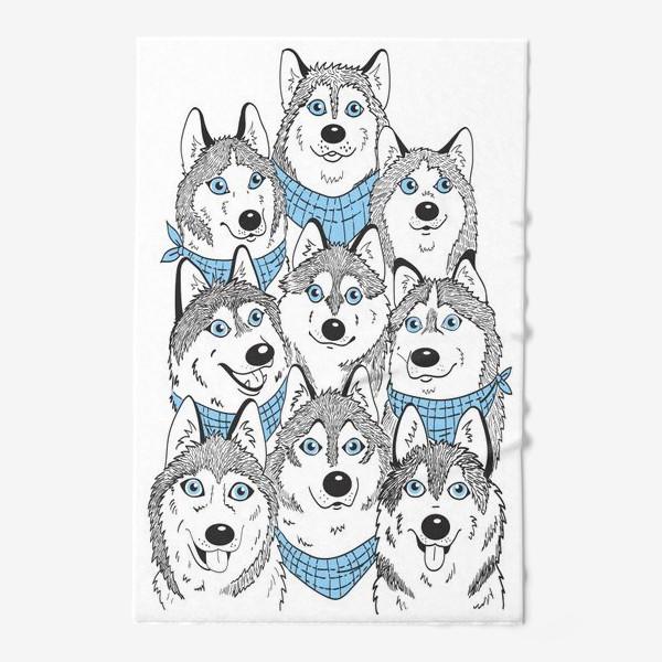 Полотенце «Зима.Собаки.Веселые хаски.»