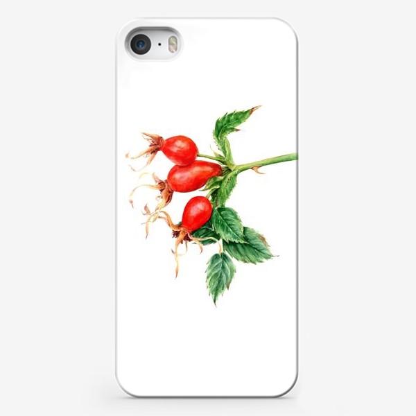 Чехол iPhone «Ветка шиповника ботаническая иллюстрация акварель»