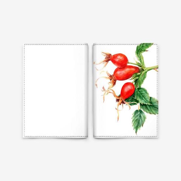 Обложка для паспорта «Ветка шиповника ботаническая иллюстрация акварель»