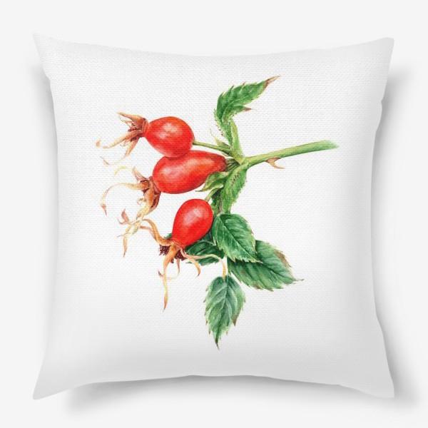 Подушка «Ветка шиповника ботаническая иллюстрация акварель»