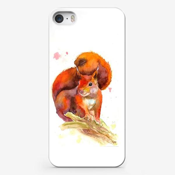 Чехол iPhone «белка»