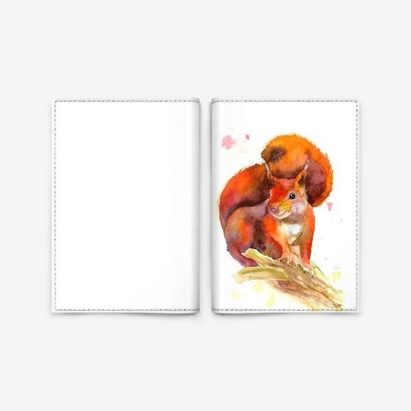 Обложка для паспорта «белка»