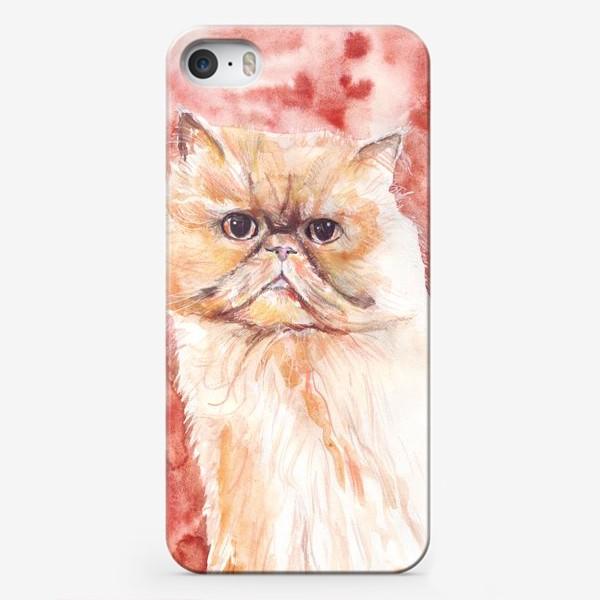 Чехол iPhone «Персидский кот»