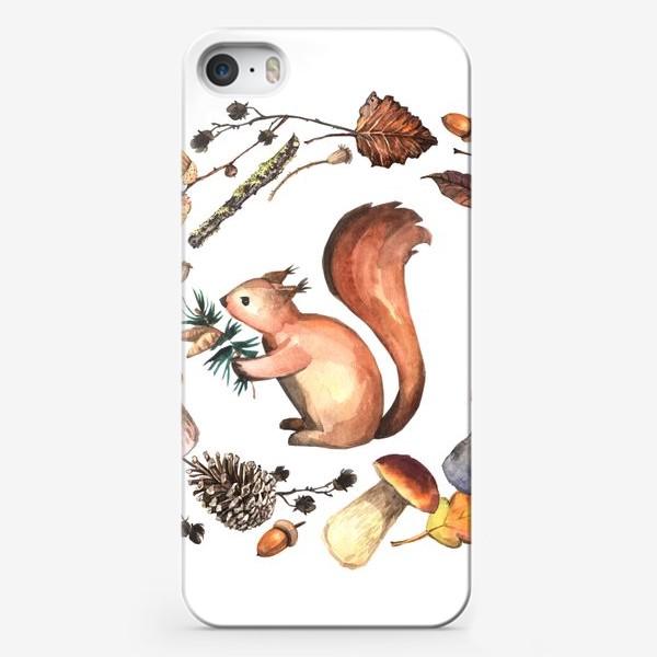 Чехол iPhone «Белочка в осеннем лесу»