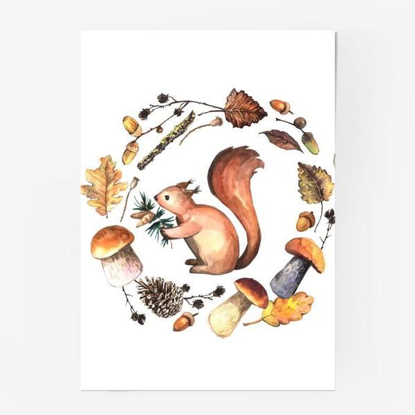 Постер «Белочка в осеннем лесу»