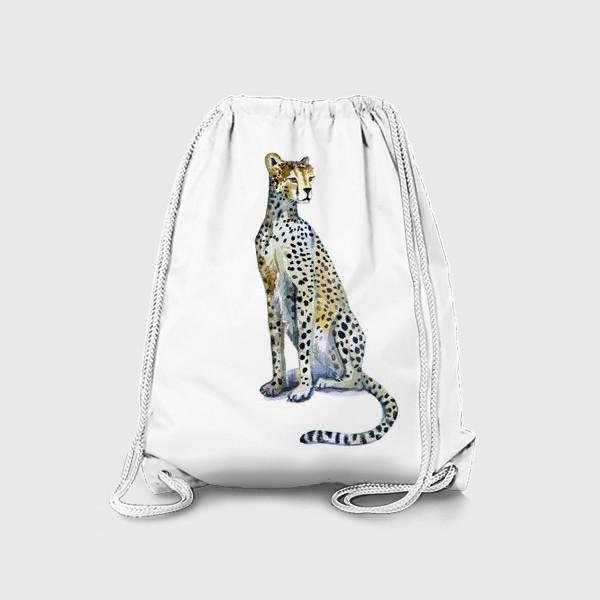Рюкзак «ГЕПАРД»